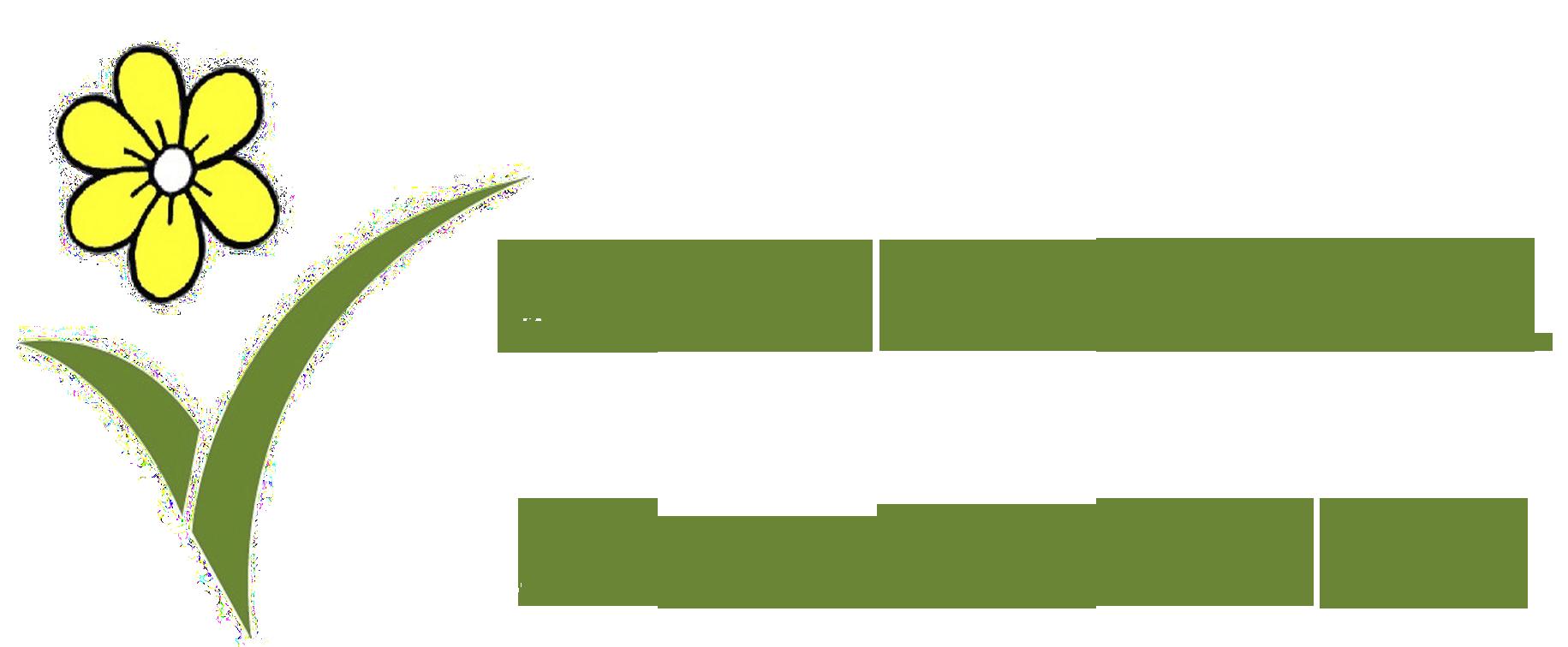 La veneziana Fiori e Piante Carrara
